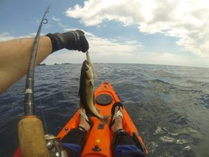 How to fish from a kayak
