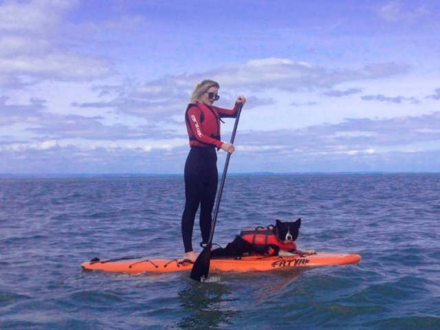 Dog on SUP