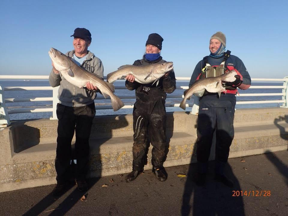 blue anchor cod classic 2018